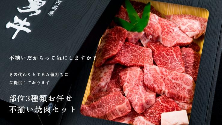 部位3種類お任せ 熟成飛騨牛不揃い焼肉セット